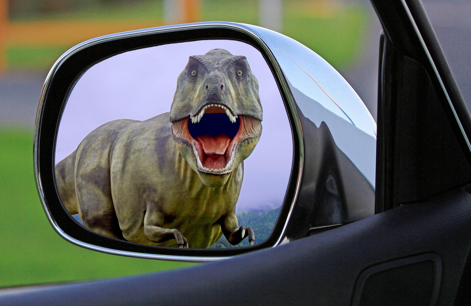 dinosaur-mirror.jpg