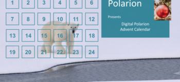 Digital Polarion Advent Calendar