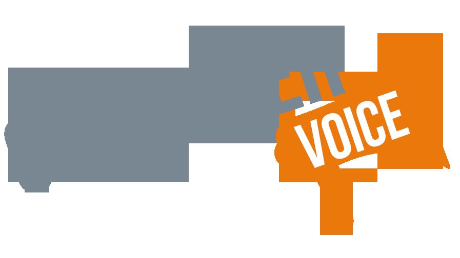 CustomerVoice1.png