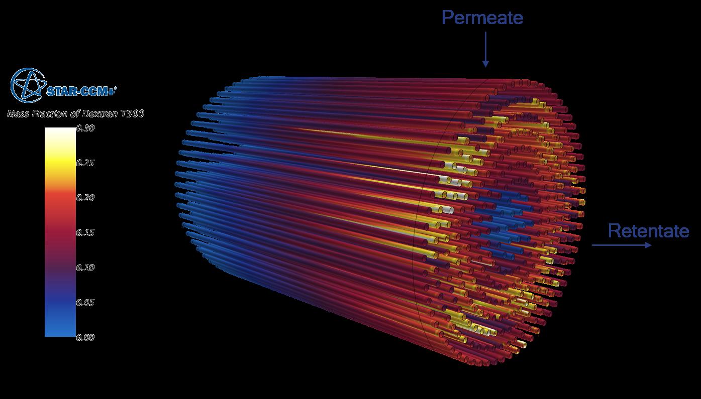 Membrane.png