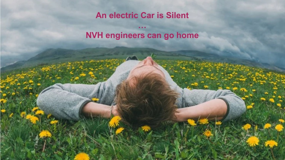 man on grass (an electric car is silent)