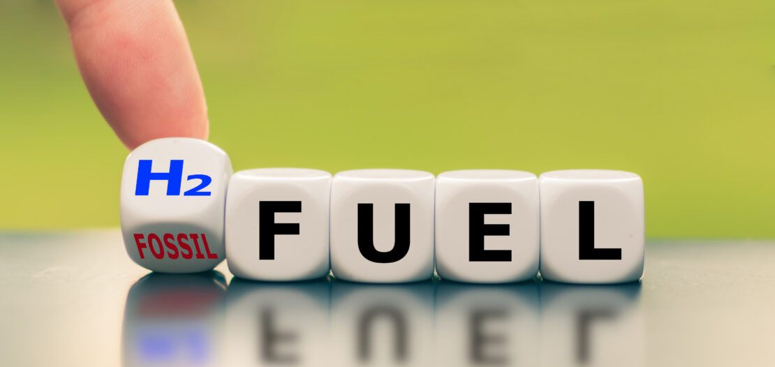 Fuel cell combustion