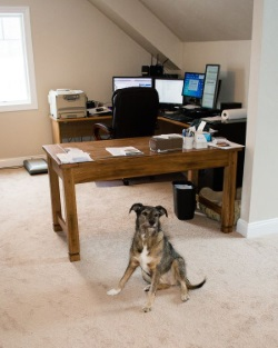 officeassistant.jpg