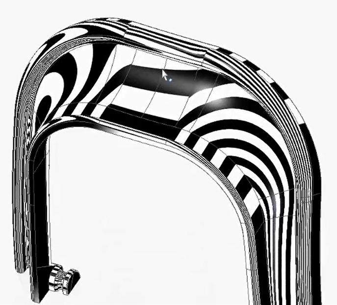 surfacing zebra.jpg